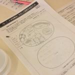 お弁当の設計図