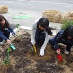 緑あふれるショッピングを願って植樹する学生たち
