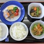 先生がつめたお弁当を食器に移し替えると、一食分の食事ができました